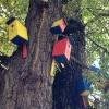 В Омске установят арт-объект из 70 скворечников
