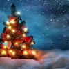 Омичи отметили Старый Новый год без энтузиазма