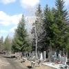 В Омской области погиб инвалид детства