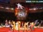 Омский цирк готовит слонов