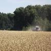Омичи намолотили почти 3 млн тонн зерна