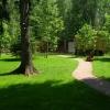 В Омске появилась карта озеленения