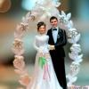 Организация свадебного процесса – дело не легкое…