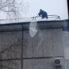 За три дня от схода с крыш снега пострадали два омича