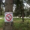 Депутатов смутила дешевая стоимость контракта на обработку омских парков от клещей