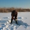 Омскую «Птичью гавань» насыщают кислородом