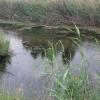 В Омской области пьяная пенсионерка утонула в котловане