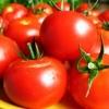 В Омск привезут недорогие продукты