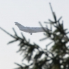 Плановая техническая проверка самолетов СЛО «Россия» началась после визита Мединского в Омск