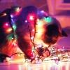 Как создать атмосферу праздника в Вашем доме
