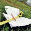 Прокуратура вявила нарушение периодичности оценки земель в Омской области
