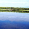 Под Омском на берегу озера обнаружено тело сельчанина