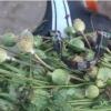 В Омской области задержали велосипедиста с килограммом наркотиков