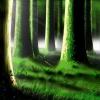 Комитет направили в лес