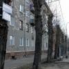 Деревья в Омске будут сносить по-новому