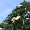 Напротив мэрии Омска установят зимний светодиодный фонтан