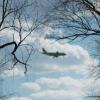 Слетать из Омска в Новосибирск можно будет за 5 тысяч рублей