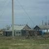 В Тарском районе погиб лесовод