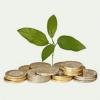 Где взять микрозайм на счет в банке?