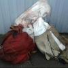 Егерь в Омской области нашел три мешка с лосятиной
