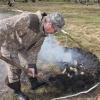 Весенняя охота начнется в Омской области 30 апреля и пройдет в два этапа