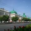 На Любинском проспекте в Омске высадят 12 тысяч кустарников