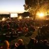 В омском парке 25 августа пройдет «Ночь кино»
