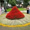 Омские чиновники ударили цветами по холодам