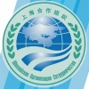 Для омских волонтеров форума лидеров стран ШОС проведут тимбилдинг