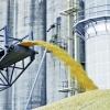 Налоговая хочет обанкротить омские «Черноглазовские мельницы»