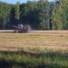 Из федерального бюджета на развитие АПК Омской области поступило 153 миллиона рублей