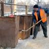 В Омске обнаружили останки медведя в мусорном баке