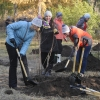 Более 150 тысяч омичей приняли участие в месячнике чистоты