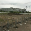 В проект озеленения напротив омской «Галерки» внесли изменения