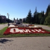 Сверстана итоговая резолюция общегородского форума «Омск - город, где я хочу жить!»