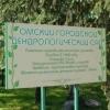 Омский дендрологический сад украсят арт-объектами