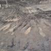 В Омске будут грейдировать грунтовые дороги