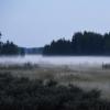 На Омскую область надвигаются туманы и дожди