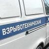 На огородах в Омской области были найдены два боеприпаса