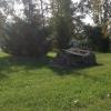 Омичи могут разработать проект парка на Старозагородной роще