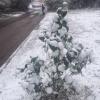 Средина месяца оказалась в Омской области самой холодной в мае