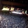 В Омской области бомж погиб под колесами грузового поезда