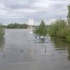 В Омской области объявлен режим ЧС из-за паводка в соседнем регионе