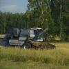 В семи районах Омской области уже собрали урожай