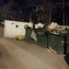 Омичи заметили трупы собак на мусорке в Авиагородке