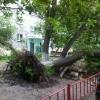 По Омску пронесся ураган (фото)