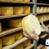 Омская область пятая в России по объему производства сыра