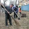 4800 деревьев высадили омичи на субботнике