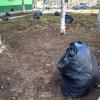 После субботника мусор с улиц Омска будут вывозить еще две недели