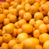 Грузовики с 40 тоннами фруктов и овощей из Казахстана не пропустили на Омской таможне